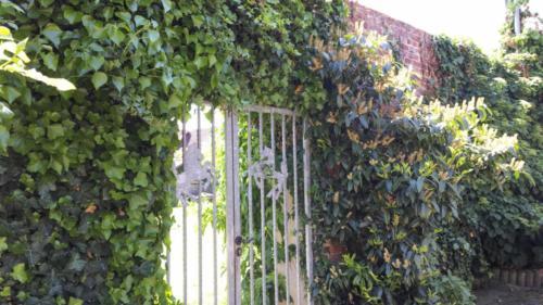 Ferienhof Morich - Innenhof mit Übergang zum Garten